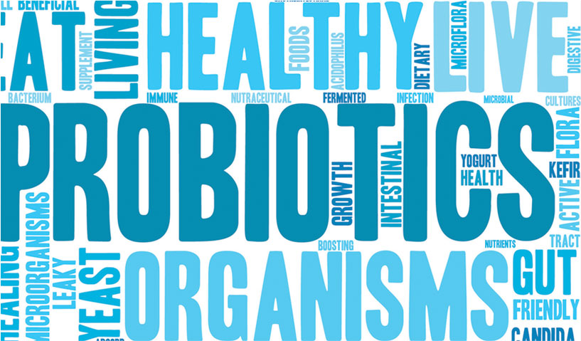 Prebiotics and Probiotics: The Best Combo for a Healthy Gut